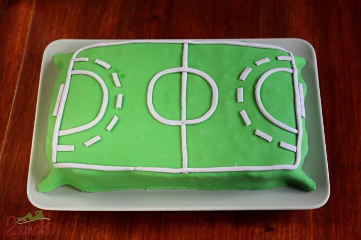 Tort boisko do piłki ręcznej 9