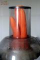 Świeże soki owocowo-warzywne marchwiowy