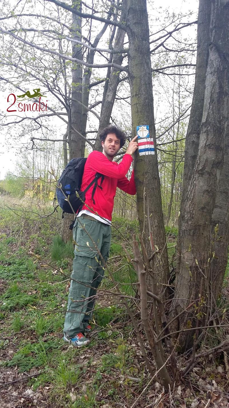 Marsz w Górach Świętokrzyskich - Podlesie