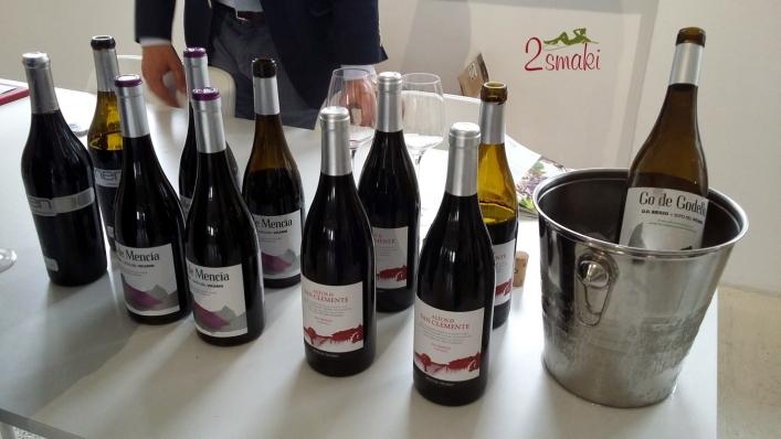 Degustacja win z regionu Kastylia i Leon - 10 Soto del Vicario