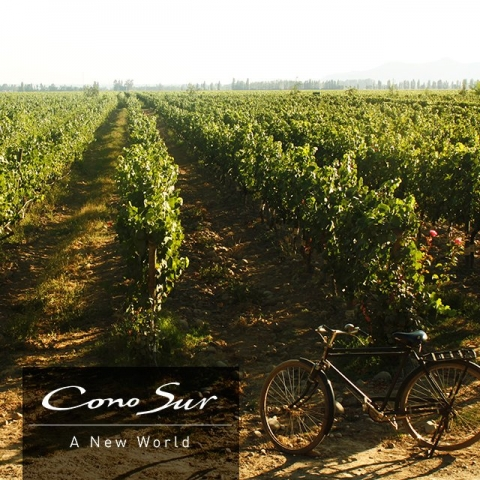 conosur_bike